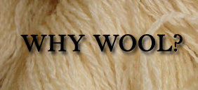 Why Wool